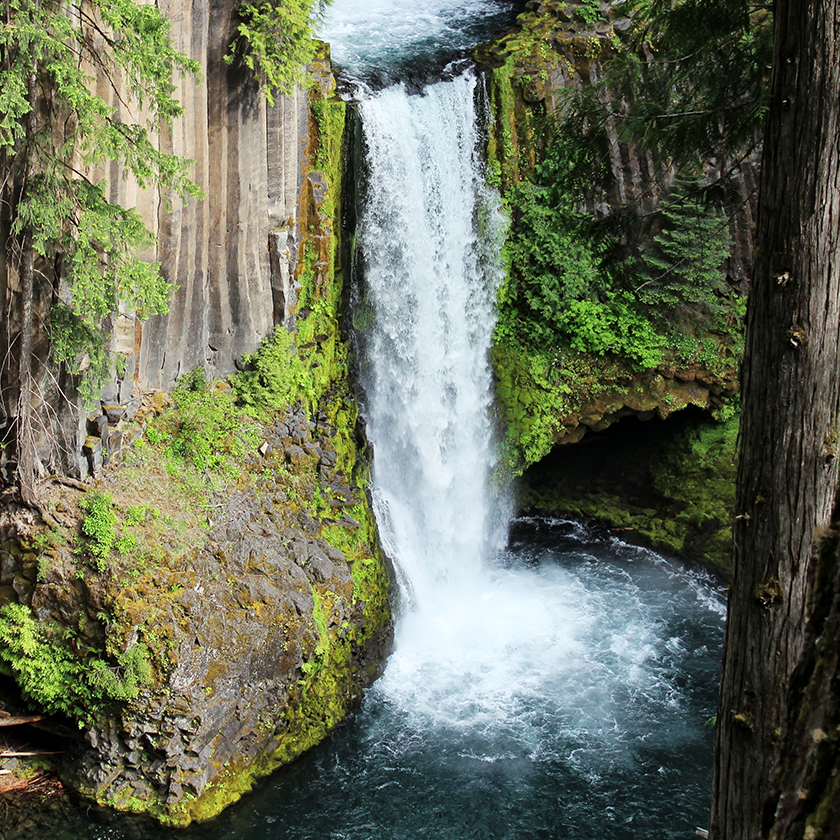 Toketee Falls / Oregon